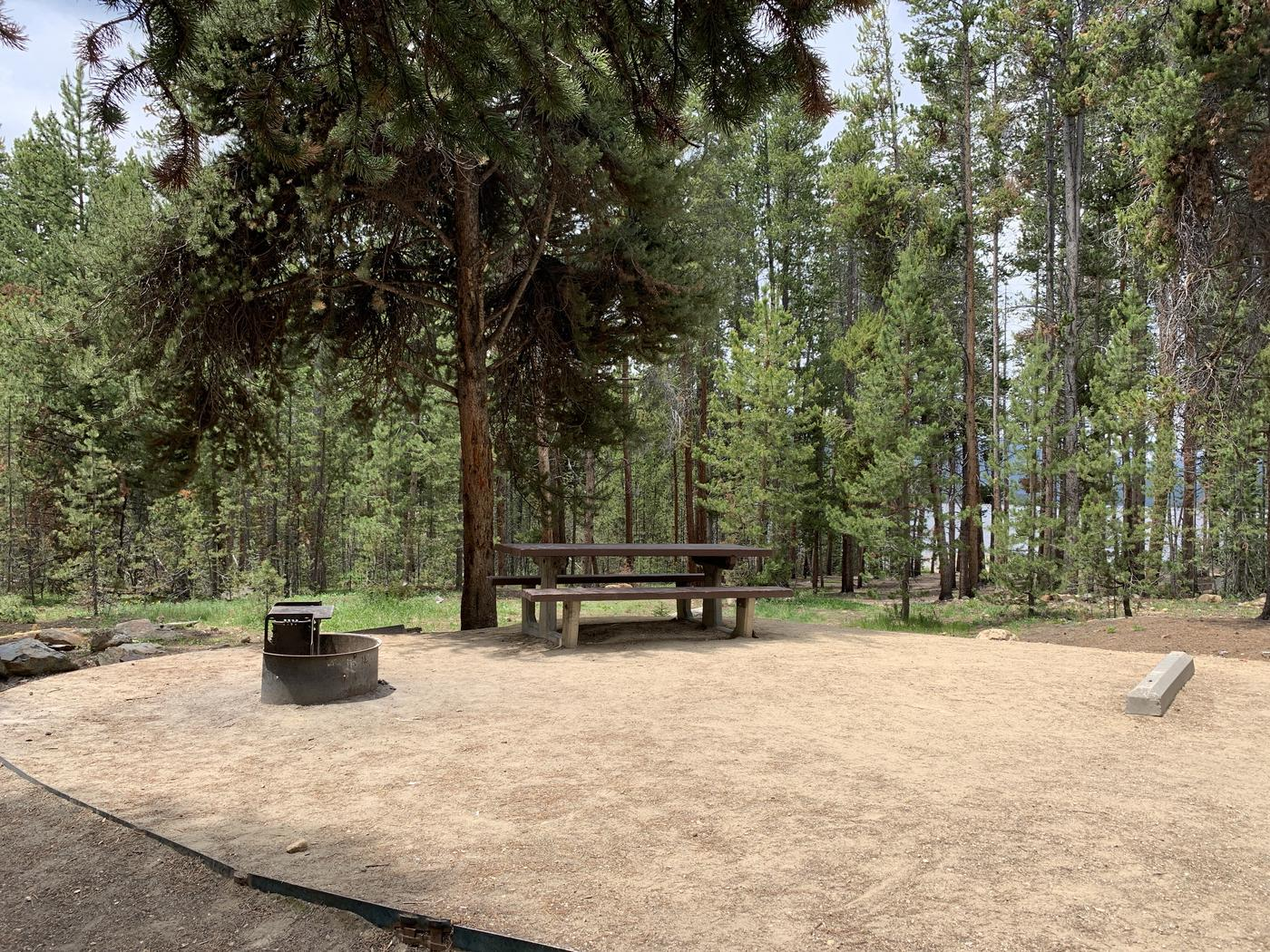 Molly Brown Campground, site 14 picnic table and fire ring 2