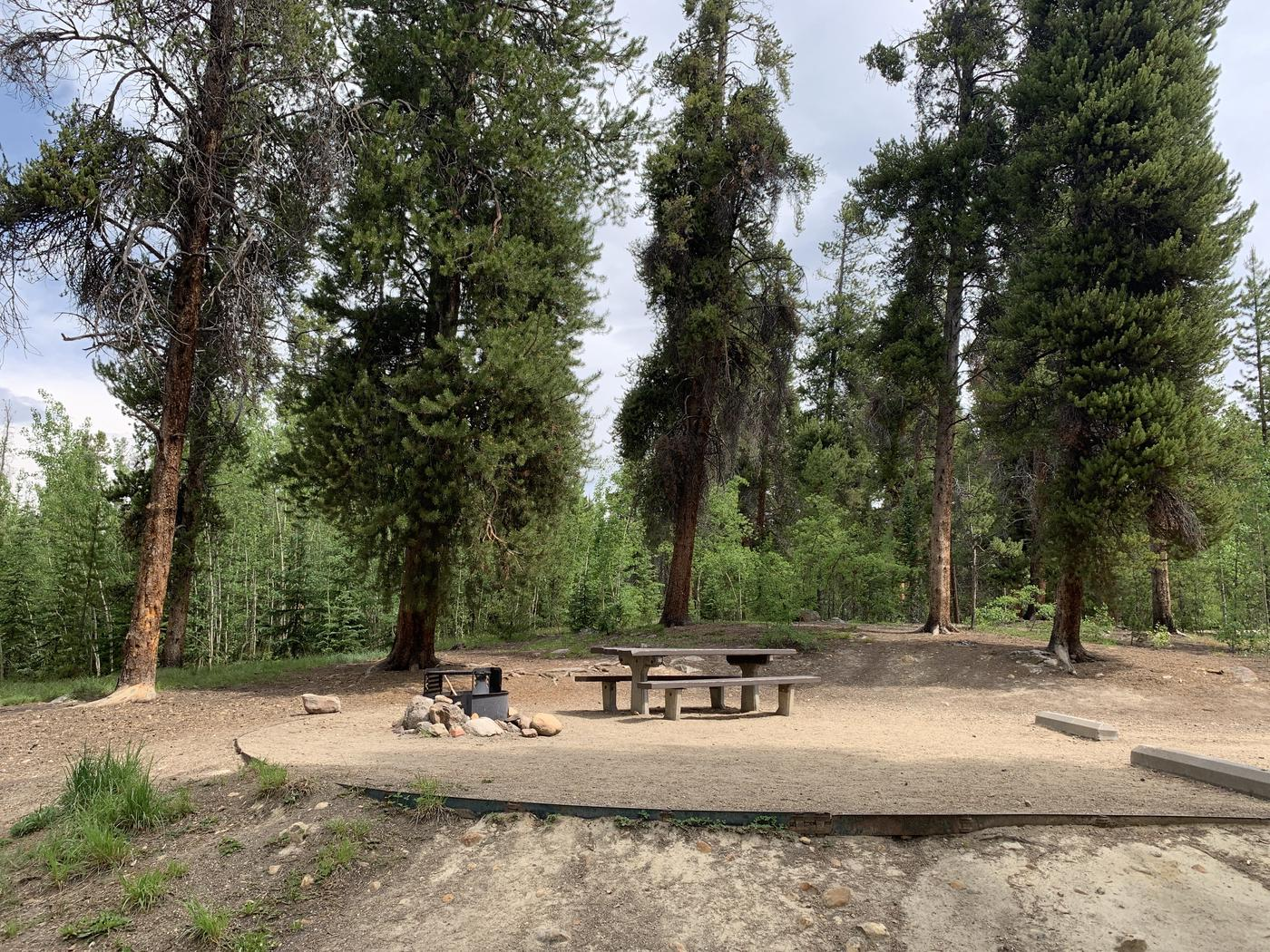 Molly Brown Campground, site 36 picnic table and fire ring