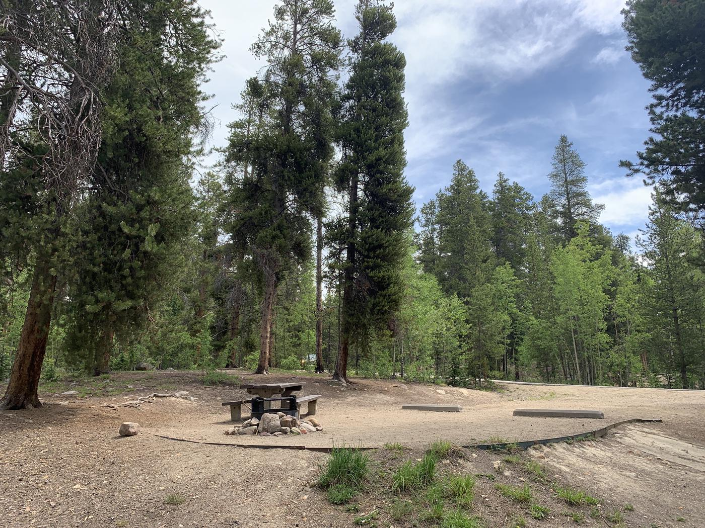 Molly Brown Campground, site 36 picnic table and fire ring 2