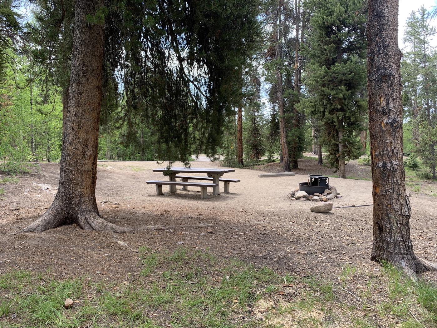 Molly Brown Campground, site 36 picnic table and fire ring 4