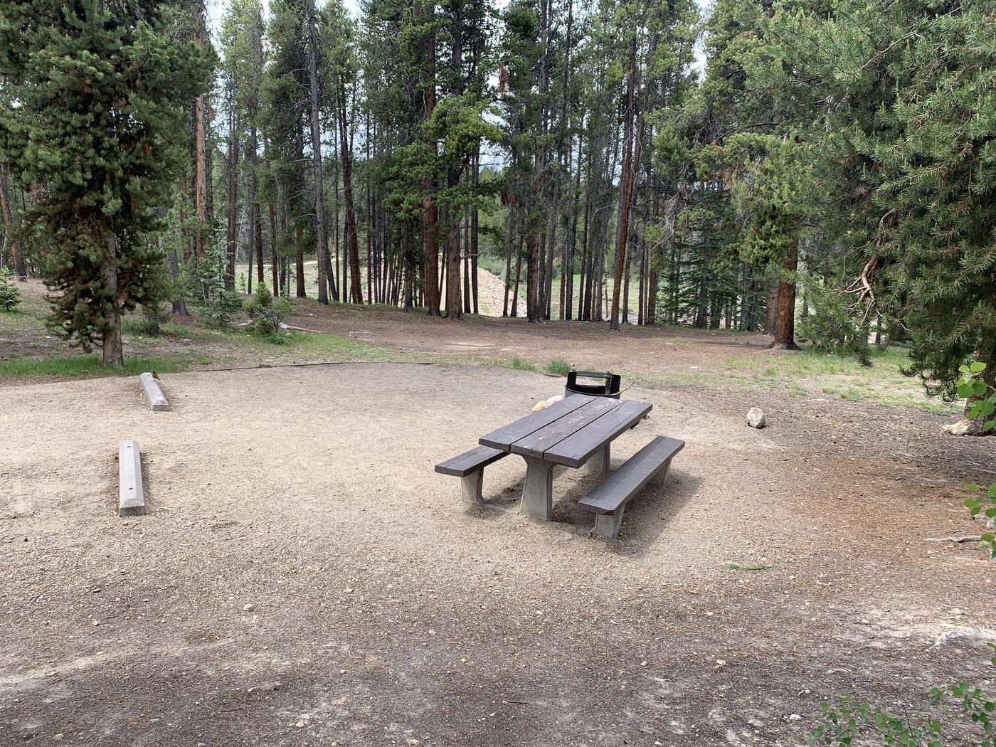 Molly Brown Campground, site 36 picnic table and fire ring 5