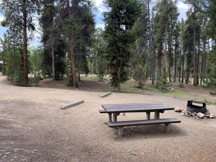 Molly Brown Campground, site 36 picnic table and fire ring 6