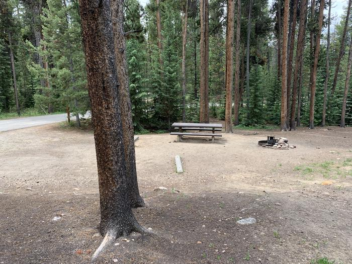 Molly Brown Campground, site 17 picnic table and fire ring 4