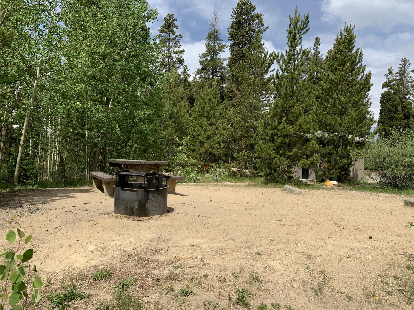 Molly Brown Campground, site 38 picnic table and fire ring