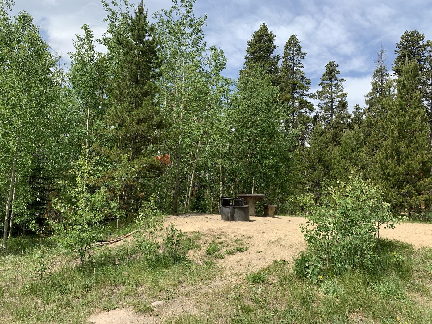 Molly Brown Campground, site 38 site view