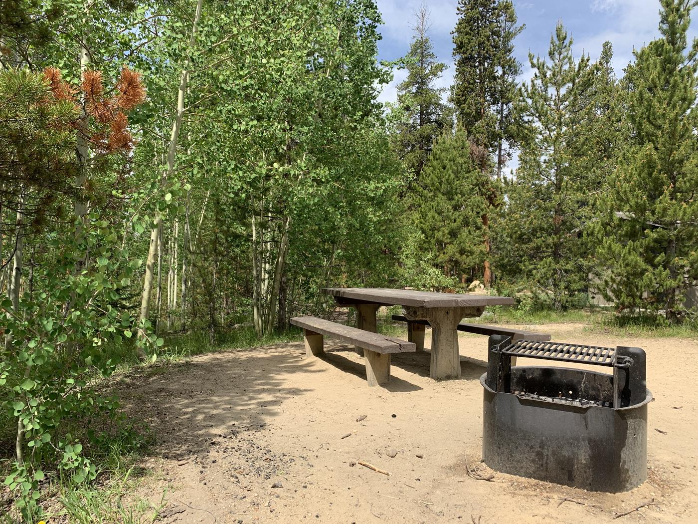 Molly Brown Campground, site 38 picnic table and fire ring 2