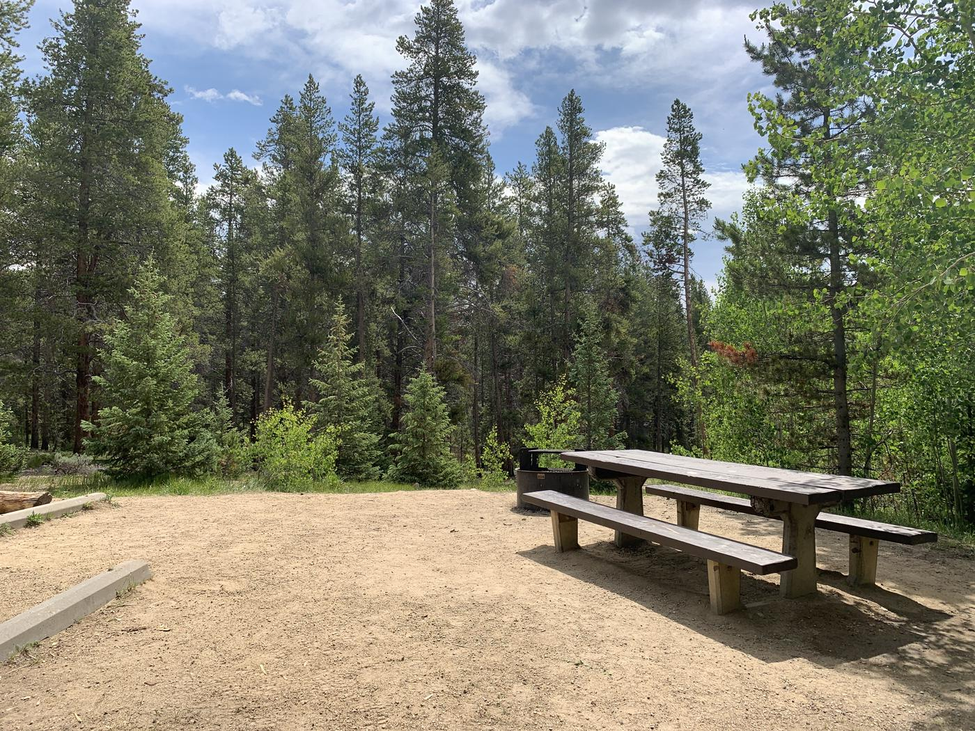 Molly Brown Campground, site 38 picnic table