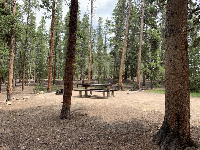 Molly Brown Campground, site 27 picnic table and fire ring