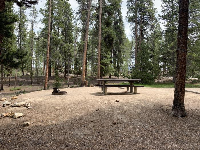 Molly Brown Campground, site 27 picnic table and fire ring 2