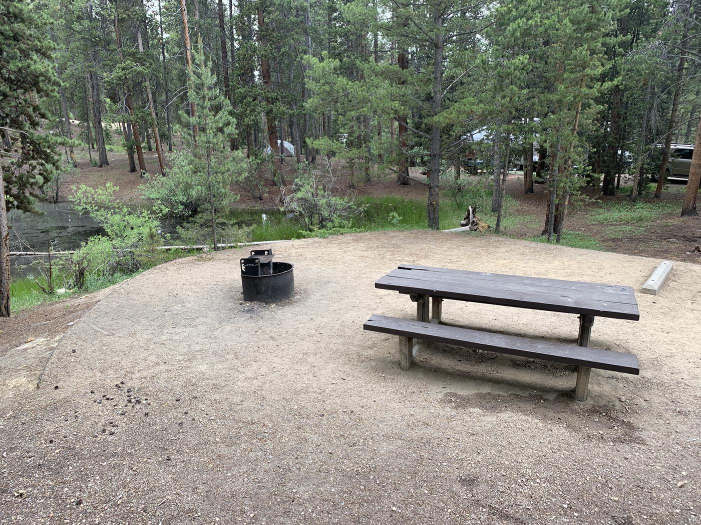 Molly Brown Campground, site 22  picnic table and fire ring 3