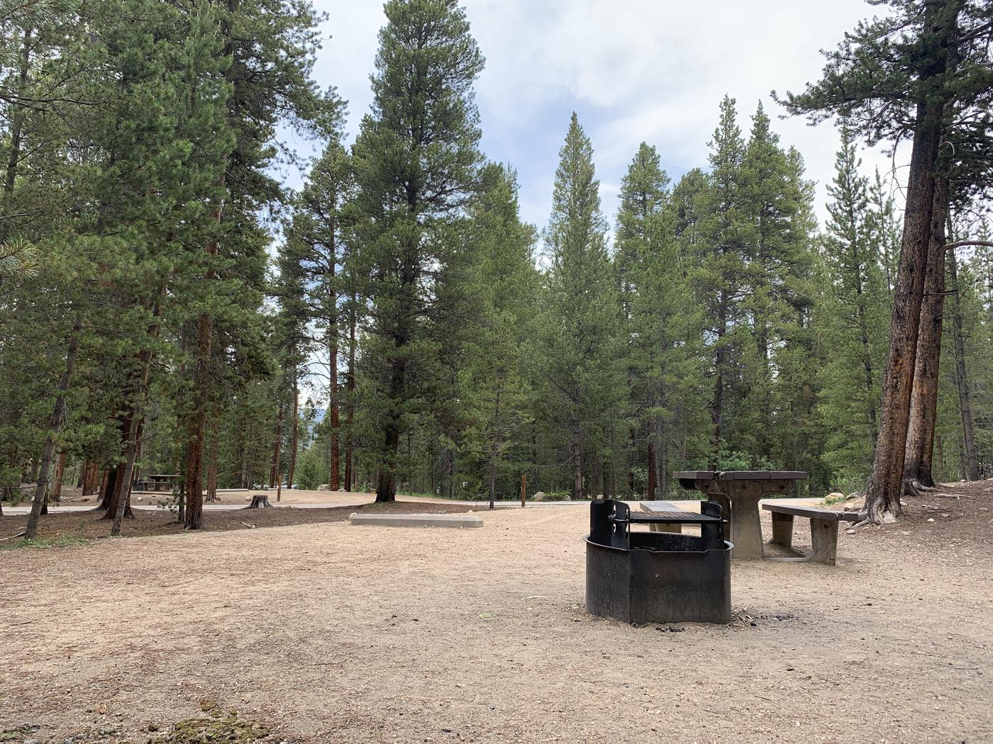 Molly Brown Campground, site 22  picnic table and fire ring 6