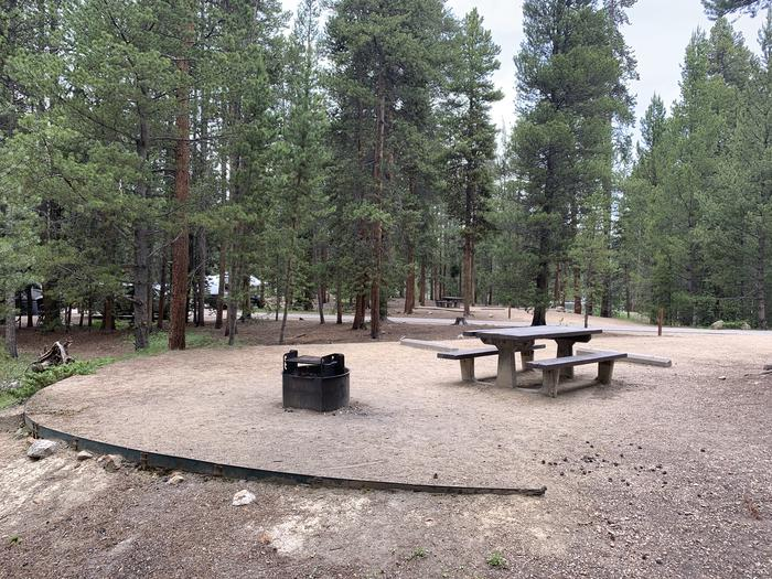 Molly Brown Campground, site 22  picnic table and fire ring 5