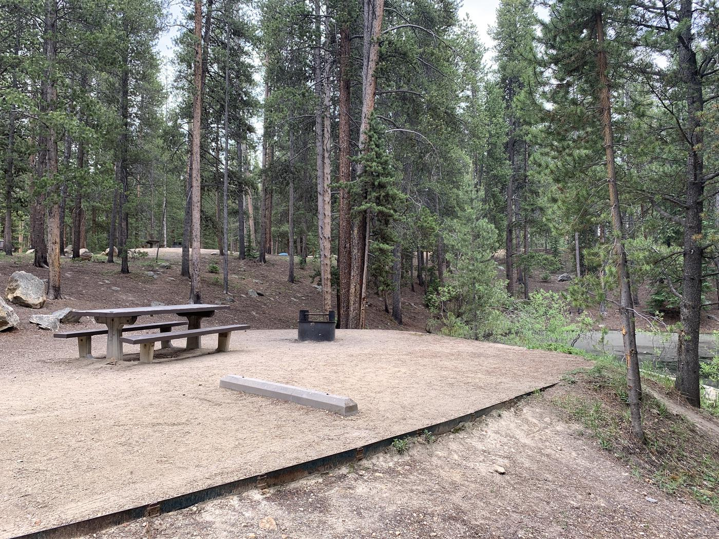 Molly Brown Campground, site 22  picnic table and fire ring 9