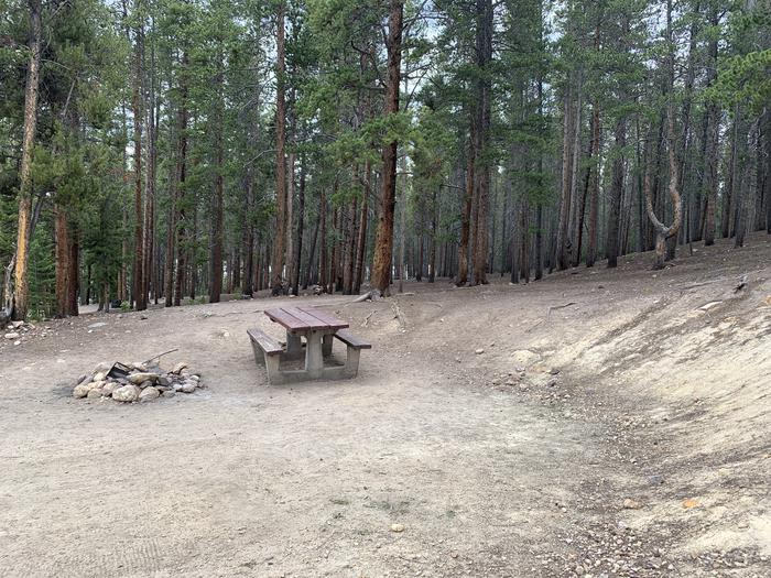 Molly Brown Campground, site 1 picnic table and fire ring