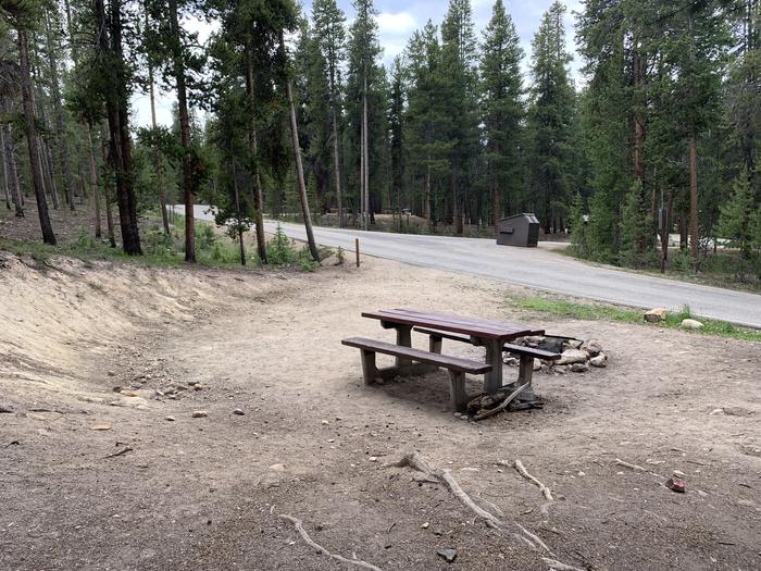 Molly Brown Campground, site 1 picnic table 2
