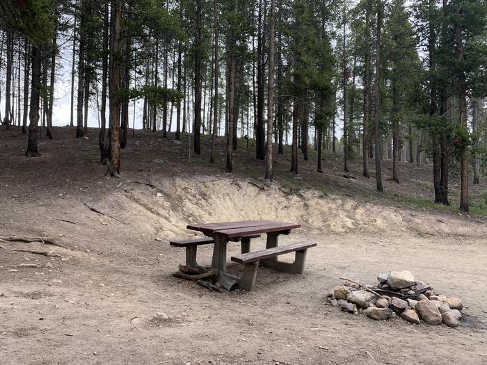 Molly Brown Campground, site 1 picnic table and fire ring 5