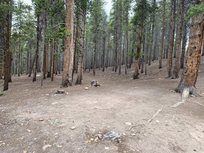 Molly Brown Campground, site 1 clearing
