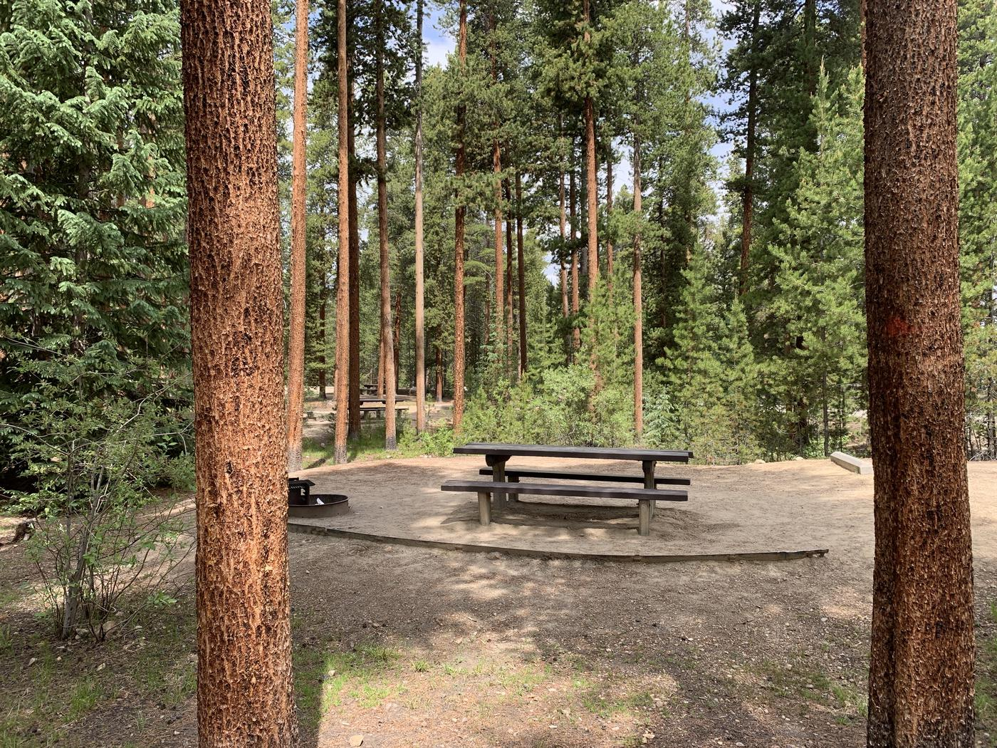 Molly Brown Campground, site 46 picnic table and fire ring 2