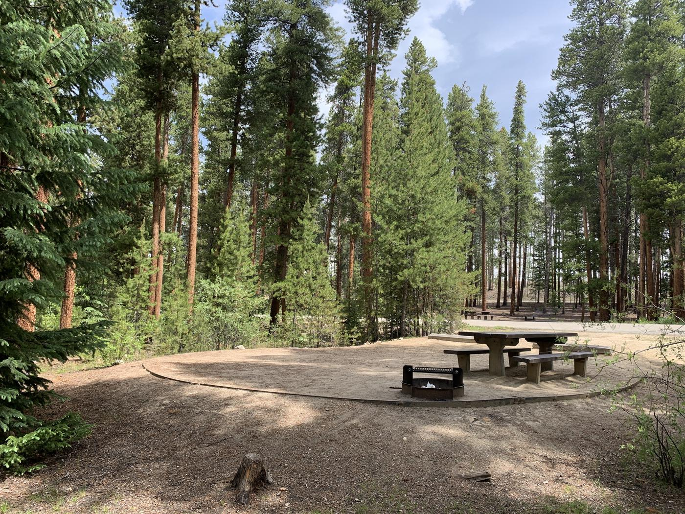 Molly Brown Campground, site 46