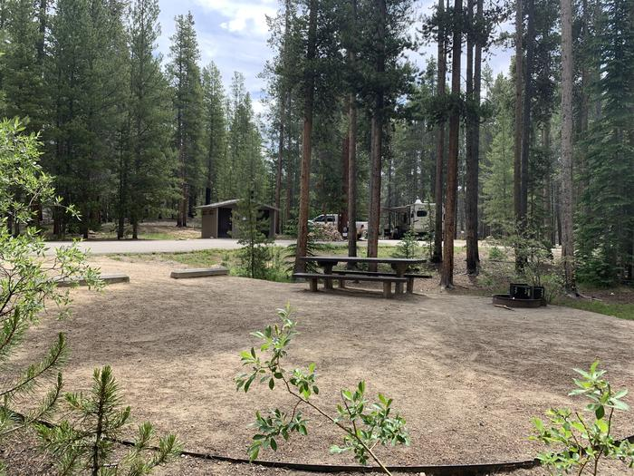 Molly Brown Campground, site 46 picnic table and fire ring 3