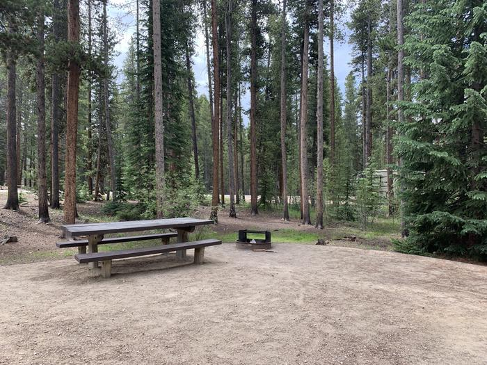 Molly Brown Campground, site 46 picnic table and fire ring 4