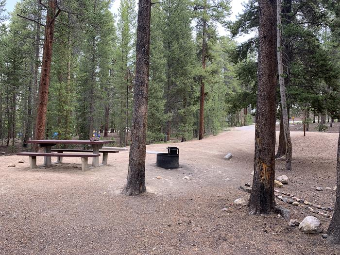 Molly Brown Campground, site 24 picnic table and fire ring