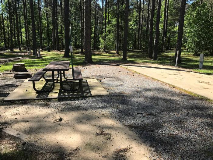 Shaded Class A Campsite 3Shaded Class A Campsite #3. RV pad, water, and 20/30/50 AMP electric hook-ups as well as basic campsite amenities including a picnic table, lantern post, fire ring, trash can and grill.