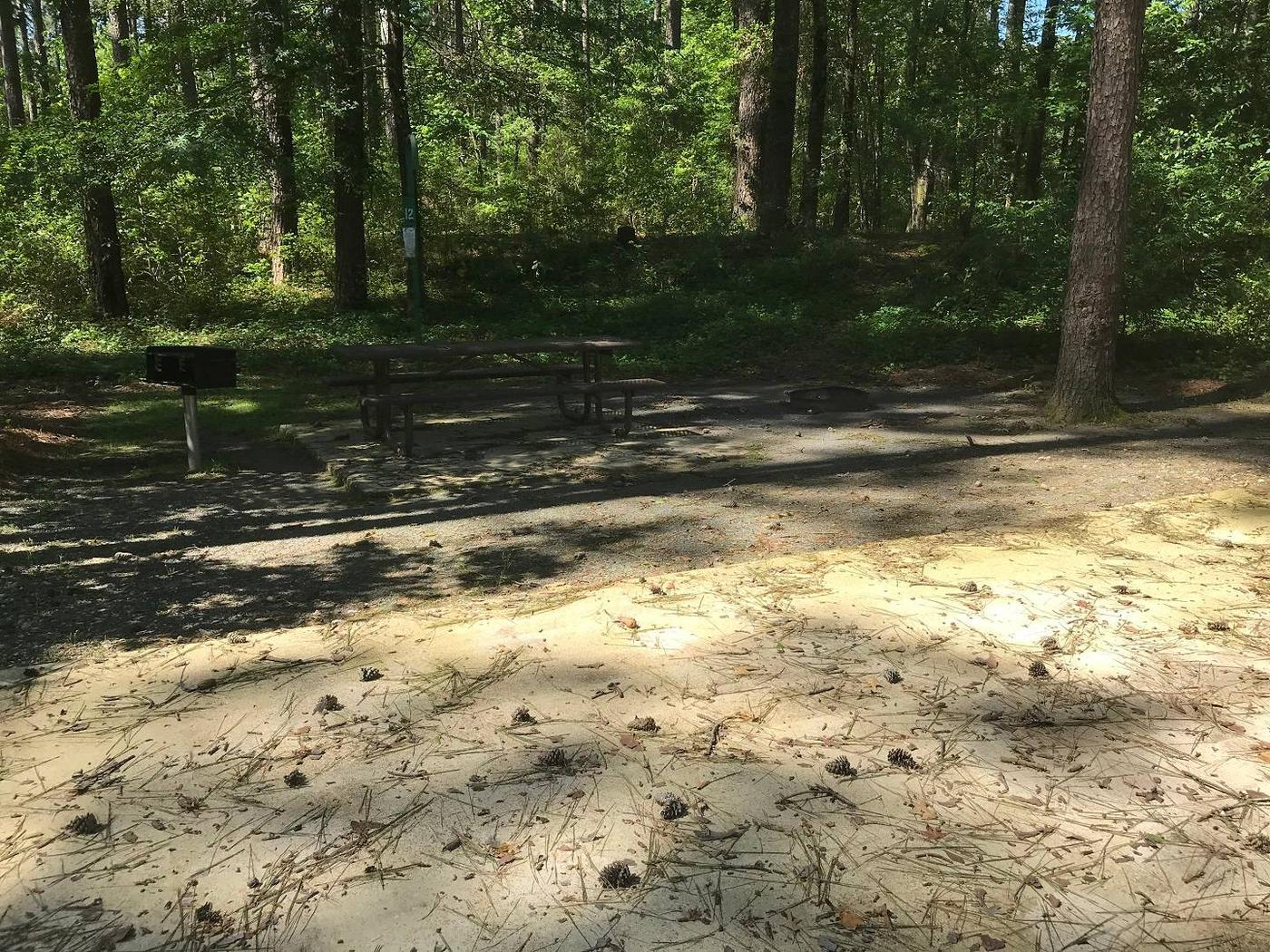 Shaded Class A Campsite #12.Shaded Class A Campsite #12. RV pad, water, and 20/30/50 AMP electric hook-ups as well as basic campsite amenities including a picnic table, lantern post, fire ring, trash can and grill.