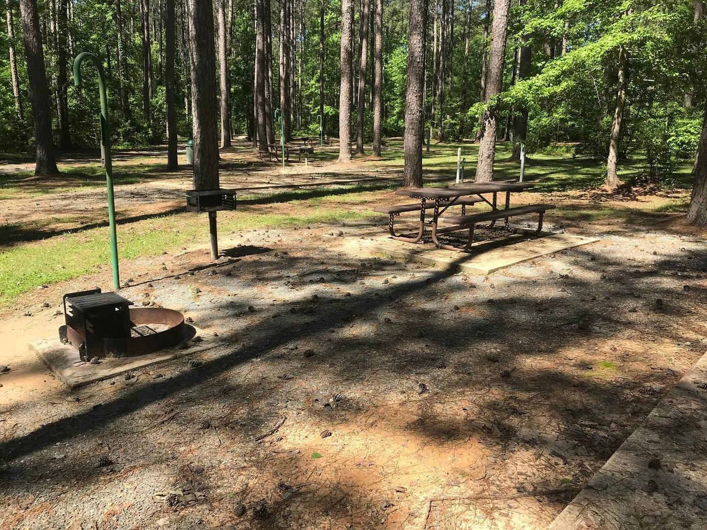 Shaded Class A Campsite 19Shaded Class A Campsite #19. RV pad, water, and 20/30/50 AMP electric hook-ups as well as basic campsite amenities including a picnic table, lantern post, fire ring, trash can and grill.