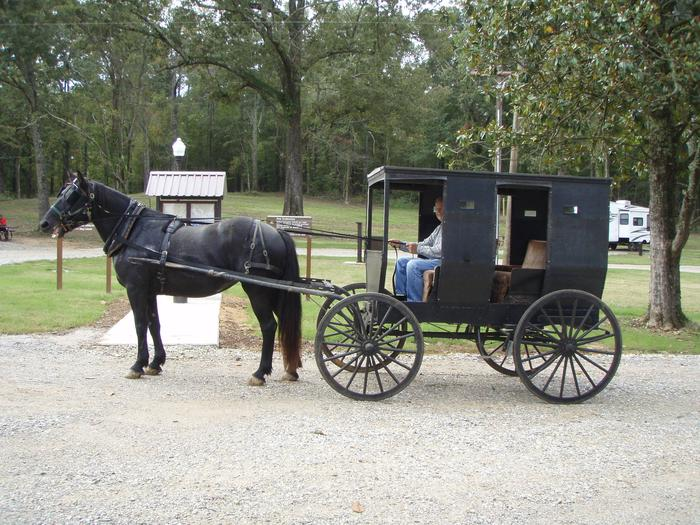 Visitors enjoying a buggy ride in Ford's Well.Enjoying Ford's Well Recreation Area