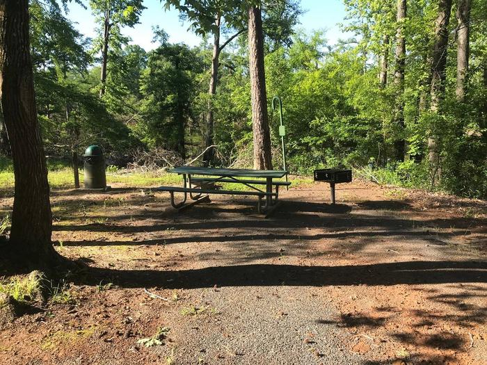 Campsite #7.Campsite #7. Tent site with the following amenities: fire-pit, grill, picnic table, lantern pole, trash can.  Located along bayou.
