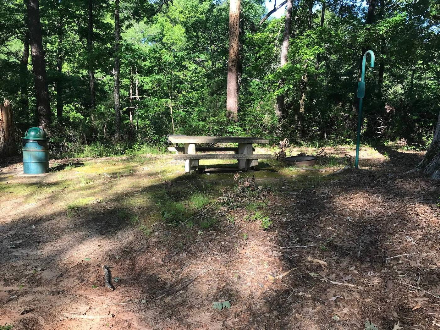 Campsite 9Campsite #9. Tent site with the following amenities: fire-pit, grill, picnic table, lantern pole, trash can.  Located along bayou.