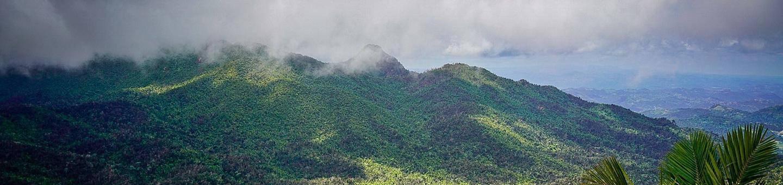 Las nubes se posan sobre el bosque tropical El Yunque. / Clouds settle in over El Yunque's tropical forest.