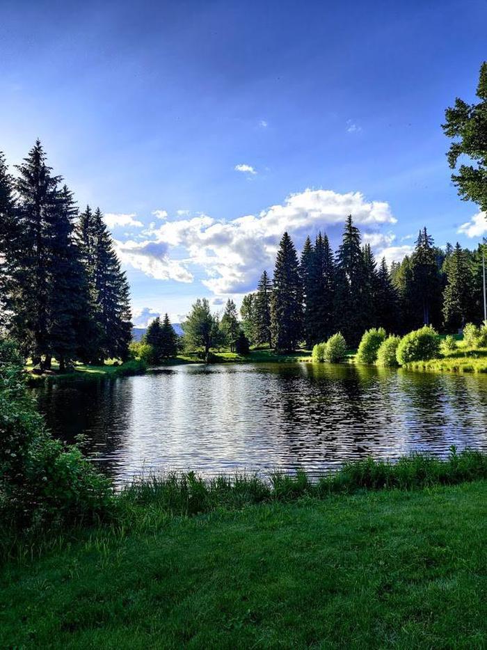 Savenac Pond in Front