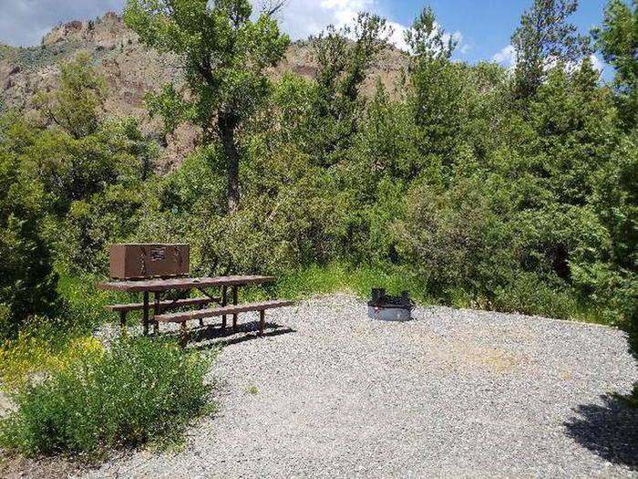 Wapiti Campsite 2 - Open Area with Picnic Table
