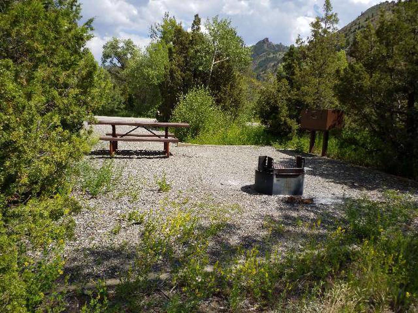 Wapiti Campsite 4 - Back View