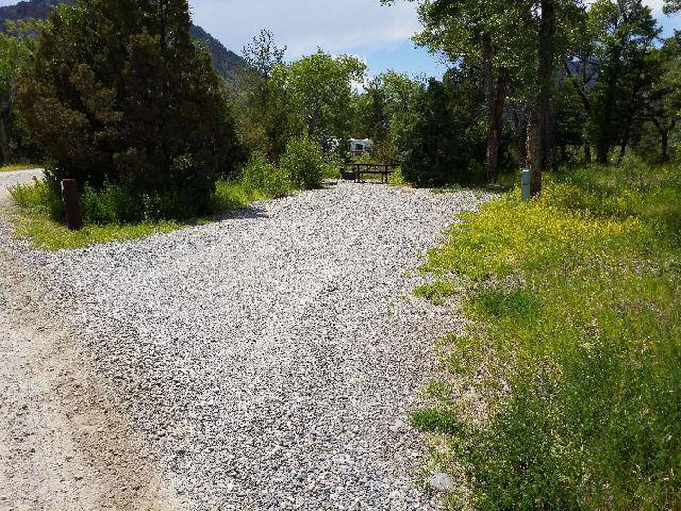 Wapiti Campsite 4 - Parking