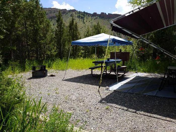 Wapiti Campsite 7 -  Picnic Area with Shade Shelter