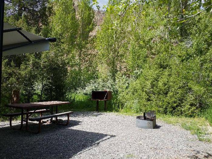 Wapiti Campsite 12 - Picnic Area