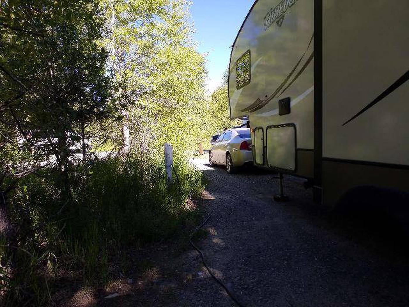 Wapiti Campsite 14 - Site with RV