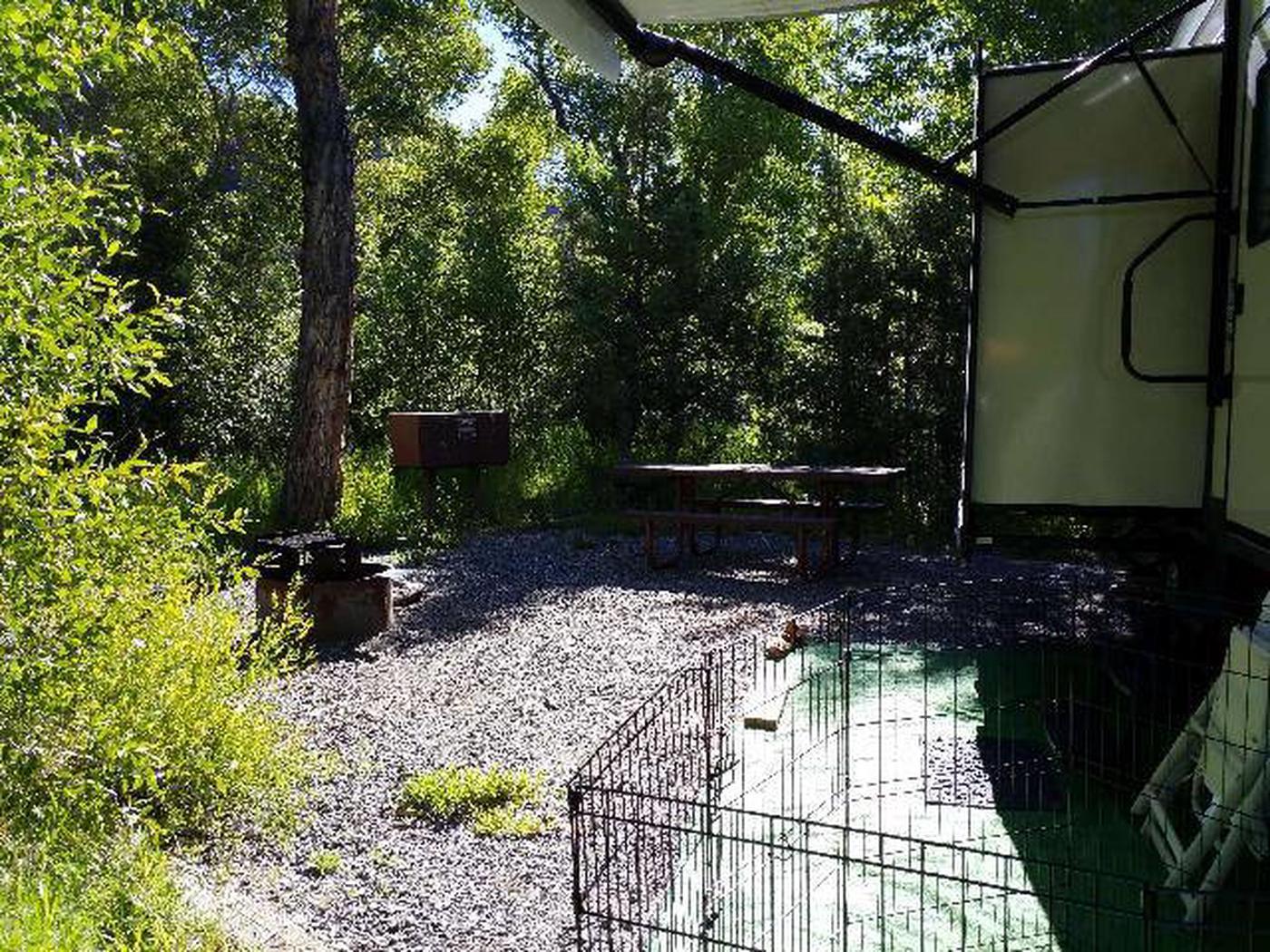 Wapiti Campsite 14 - Back Area
