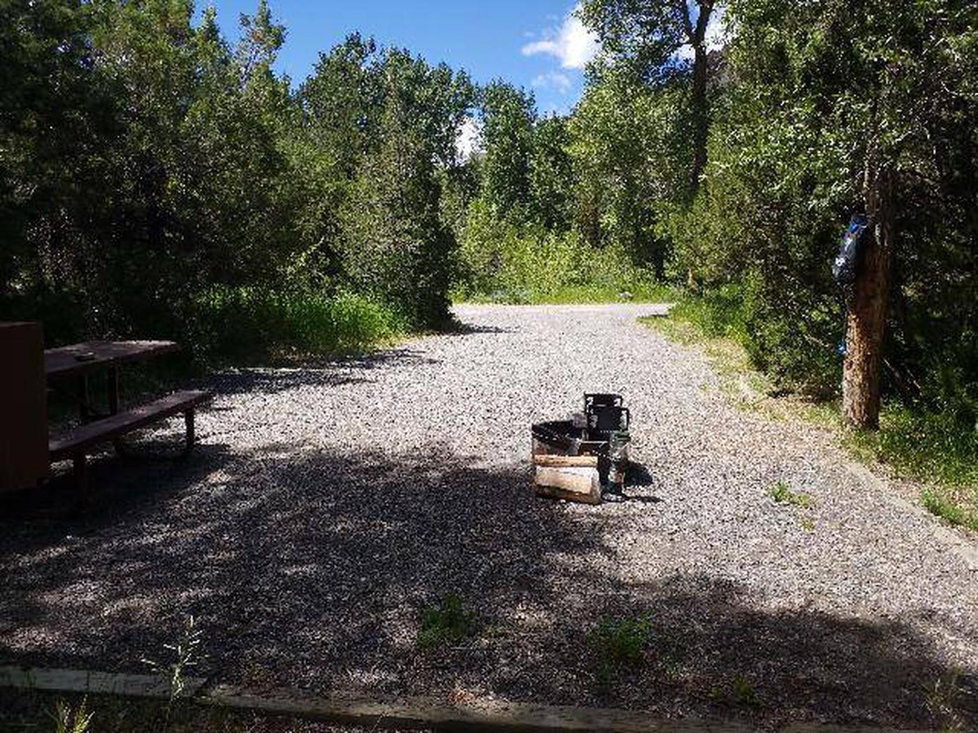 Wapiti Campsite 27 - Back View of Picnic Area
