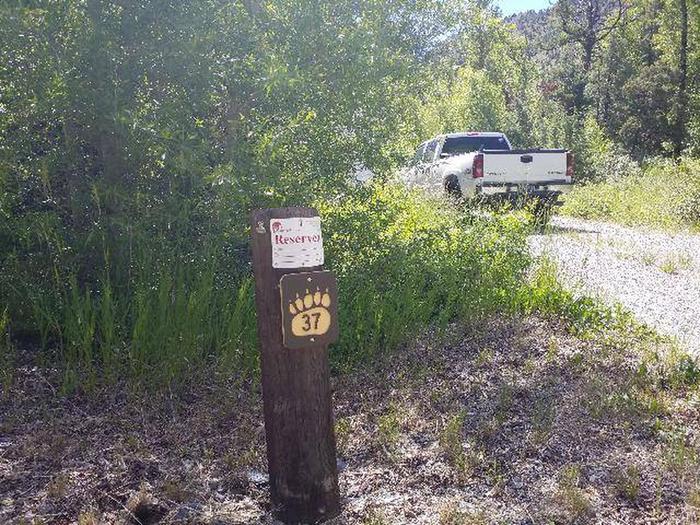 Wapiti Campsite 37 - Post with Parked VehicleWapiti Campsite 37 - Post