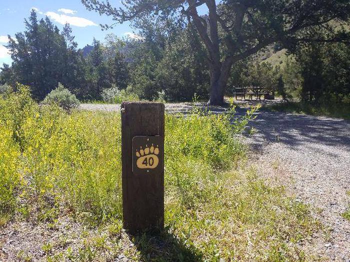 Wapiti Campsite 40 - Post