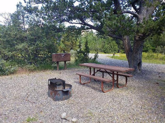 Wapiti Campsite 40 - Picnic Area
