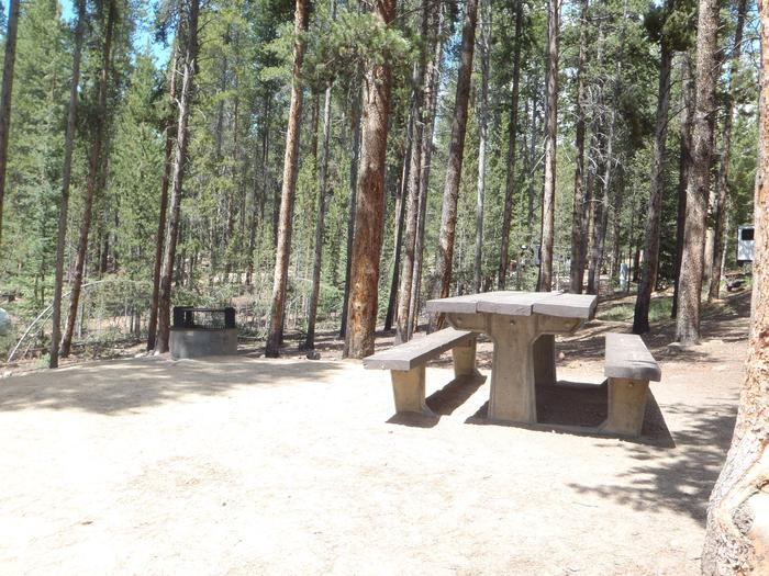 Baby Doe Campground, Site 3  table and fire ring