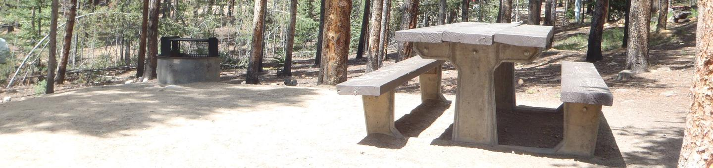 Baby Doe Campground, site 3