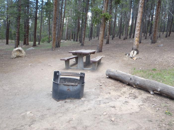 Baby Doe Campground, Site 15 fire ring and picnic table