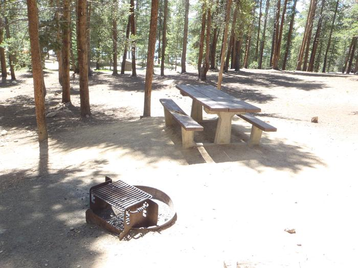 Baby Doe Campground, Site 18 picnic table and fire ring