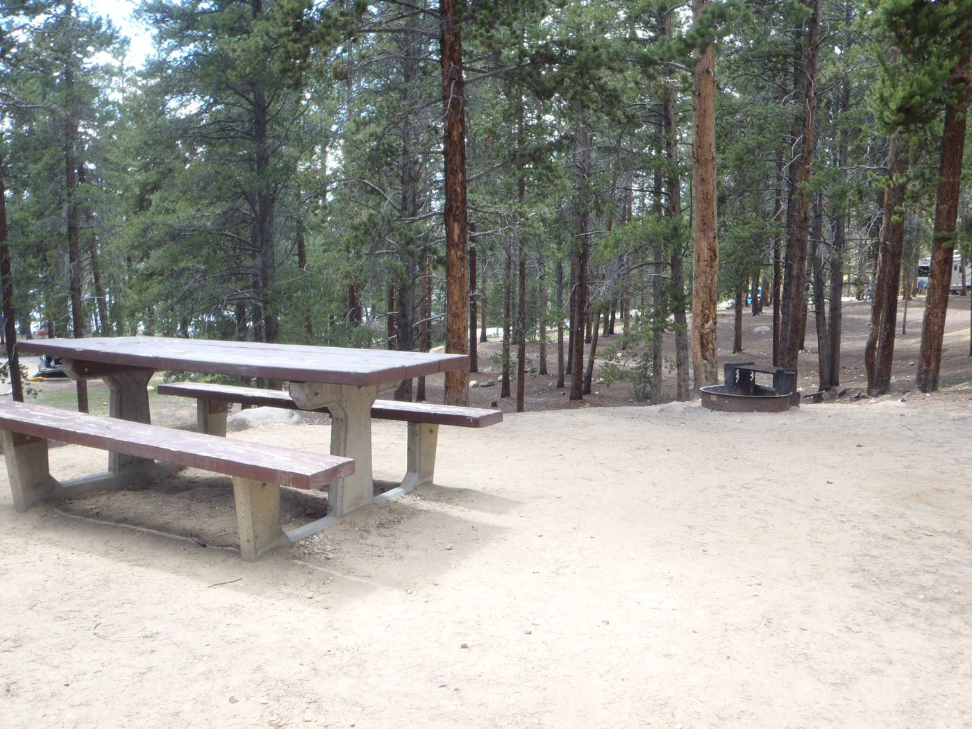 Baby Doe Campground, Site 22 picnic table and fire ring